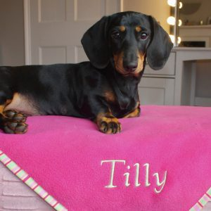 Cerise pink pet blanket